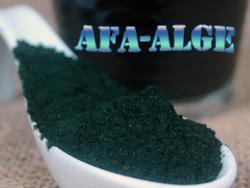afa_alge