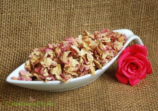 Rosenblütenblätter rosa ganz