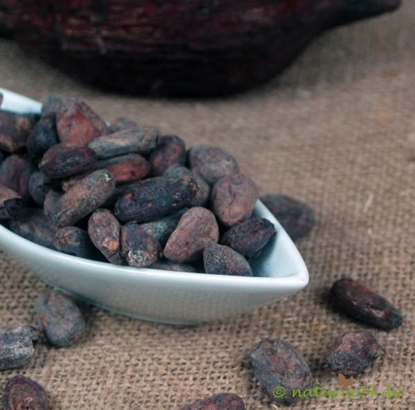 Kakaobohnen Venezuela Porcelana