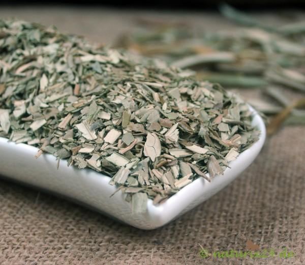 Olivenblätter geschnitten