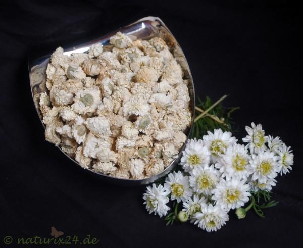 Kamillenblüten römisch ganz