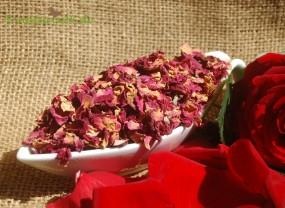 Rosenblütenblätter rot ganz