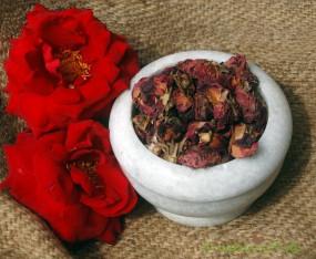 Rosenblüten dunkelrot ganz