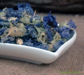 Eibischblüten blau ganz