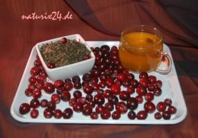 Grüner Tee Cranberry