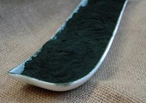 Spirulina platensis gemahlen